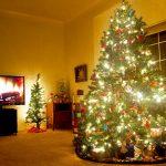 親子の英会話学習に最適!家族みんなで観たいクリスマス映画5選。
